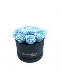 Παντοτινά Τριαντάφυλλα Αποχυμωμένα Baby Blue Forever Rose