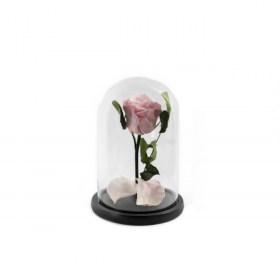 Παντοτινό Τριαντάφυλλο Αποχυμωμένο Σε Γυάλα Bridal Pink Forever Rose