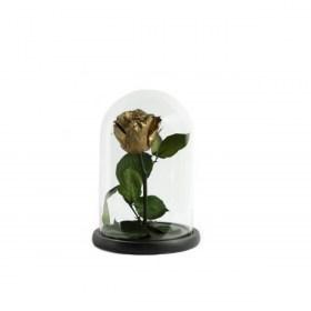 Παντοτινό Τριαντάφυλλο Αποχυμωμένο Σε Γυάλα Golden Forever Rose