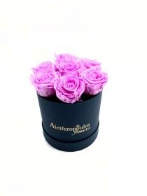 Παντοτινά Τριαντάφυλλα Αποχυμωμένα Baby Lili Forever Rose
