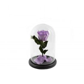 Παντοτινό Τριαντάφυλλο Αποχυμωμένο Σε Γυάλα Baby Lili Forever Rose