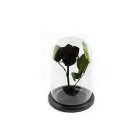 Παντοτινό Τριαντάφυλλο Αποχυμωμένο Σε Γυάλα Black Beauty Forever Rose