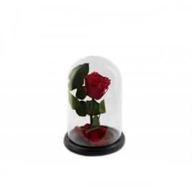 Παντοτινό Τριαντάφυλλο Αποχυμωμένο Σε Γυάλα  Red Passion Forever Rose