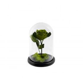Παντοτινό Τριαντάφυλλο Αποχυμωμένο Σε Γυάλα Emerald Green Forever Rose