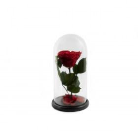 Παντοτινό Τριαντάφυλλο Καρδιά Αποχυμωμένο Σε Γυάλα Red Passion Heart Forever Rose