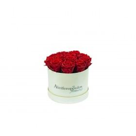 Παντοτινά Τριαντάφυλλα Αποχυμωμένα  Red Beauty Forever Rose