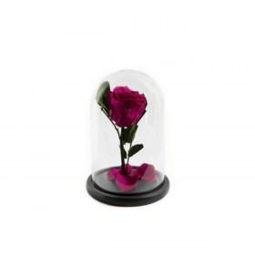 Παντοτινό Τριαντάφυλλο Αποχυμωμένο Σε Γυάλα Hot Pink Forever Rose