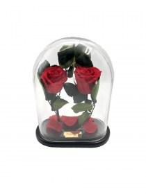 Παντοτινά Τριαντάφυλλα Αποχυμωμένα Σε Γυάλα Red Passion Forever Rose