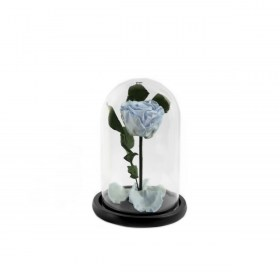 Παντοτινό Τριαντάφυλλο Αποχυμωμένο Σε Γυάλα Baby Blue Forever Rose