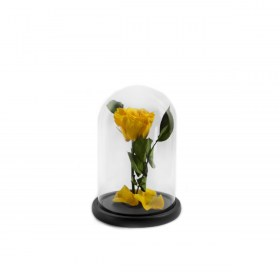 Παντοτινό Τριαντάφυλλο Αποχυμωμένο Σε Γυάλα Sunny Yellow Forever Rose